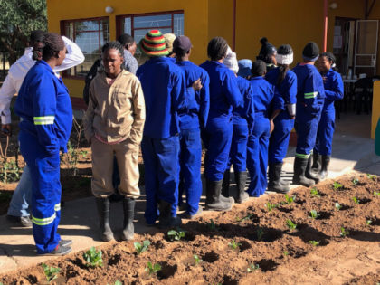 Vocational training project in Namibia successfully certified organic!